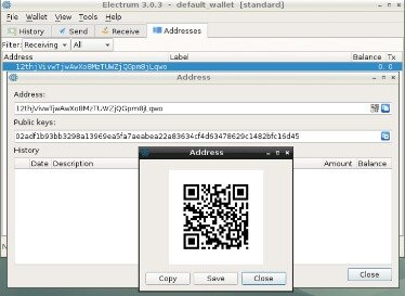 Storing Bitcoins In A Wallet